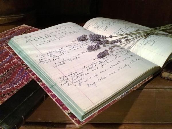 Clara Philp Diary