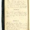 Roseltha_Goble__Diary_1868_30.pdf