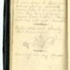 Roseltha_Goble__Diary_1868_68.pdf