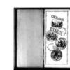 John Ferguson Diary & Transcription, 1875