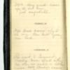 Roseltha_Goble__Diary_1868_36.pdf