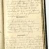 Roseltha_Goble__Diary_1868_33.pdf