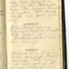 Roseltha_Goble__Diary_1868_111.pdf