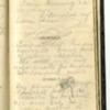 Roseltha_Goble__Diary_1868_69.pdf